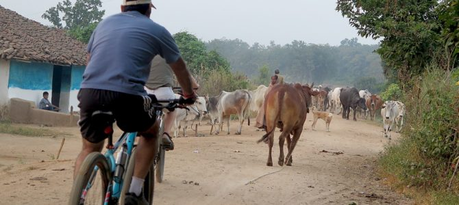 'Jungle Book' Cycling Adventure Through Local Villages of India's Kanha National Park